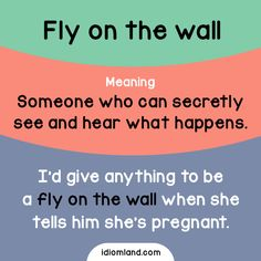 Idiom of the day: Fly on the wall. Meaning: Someone who can secretly see and hear what happens. Example: I'd give anything to be a fly on the wall when she tells him she's pregnant. Learn English Grammar, English Idioms, English Vocabulary Words, English Language Learning, English Phrases, Learn English Words, Teaching English, English Tips, English Fun
