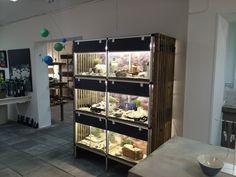 Det er 2 måneder siden at Tinga Tango designbutik åbnede #designbutik#nyborg#butik#smykker
