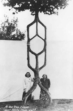 Wilma Erlandson and her mother beside an arborsculpture by Alex Erlandson.