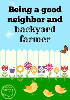 Being a Good Neighborhood Farmer - The Cape Coop