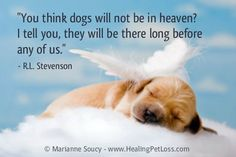 Coping with the loss of a pet http://healingpetloss.com/ #petloss