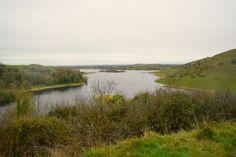 In Lough Gur, ganz in der Nähe von Limerick, wird man Zeuge prähistorischen Lebens. Gänsehaut-Feeling inklusive. #loughgur #irland #ireland #travel #reisen #reiseblogger #travelblogger