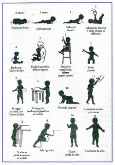 Le principali tappe nello sviluppo della postura e della deambulazione (CAMAIONI, L., DI BLASIO, P., 2002, Psicologia dello Sviluppo, il Mulino, Bologna)