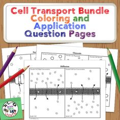 Cell Transport Activities!  These coloring and application question pages cover diffusion, osmosis, facilitated diffusion, active transport, endocytosis, and exocytosis.  Science and Math with Mrs. Lau