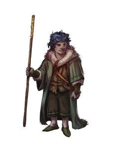 Gnome monk Druid sorcerer