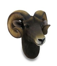 Ram Head Bust Sculptural Wall Hanging