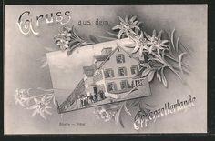 Alte Ansichtskarte: AK Säntis, Blick auf das Hotel, Edelweiss