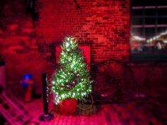 Christmas Tree @ the Distillery District Holiday Tree, Christmas Holidays, Christmas Tree, Holiday Decor, Instagram Website, Distillery, Trees, Facebook, Twitter