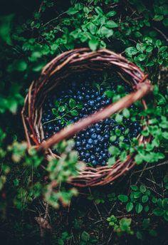 Vanilla Sauce, Vanilla Custard, Frühling Wallpaper, Call Me Cupcake, Blueberry Crumble, Custard Recipes, Crumble Recipe, What Recipe, Summer Berries