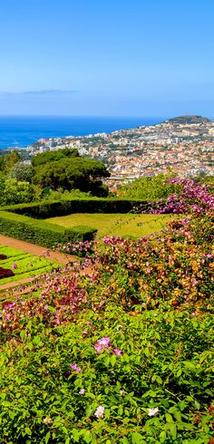 Famous Tropical Botanical Gardens in Funchal town, Madeira, Portugal   |   32 Stupendous Places in Portugal every Travel Lover should Visit