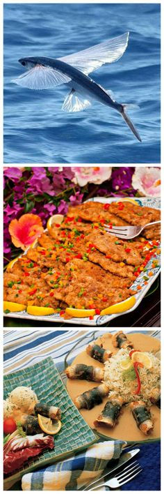 National dish of Barbados - Flying Fish.  Delicate fillets with traditional Bajan Seasoning in a batter or with breadcrumbs are lightly fried or rolled and steamed.  Can be main dish or as a 'fish cutter' stuffed in a Bajan saltbread with lettuce and tomato.