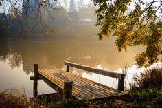 Home Pictures, Outdoor Furniture, Outdoor Decor, Fine Art Photography, Mists, Bathing, Sunshine, Autumn, Landscape