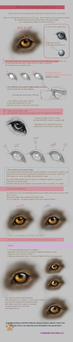 Realistic Drawing Techniques Tutorial:How to draw maximum realistic eyes! by Furrirama on DeviantArt - Animal Sketches, Animal Drawings, Cool Drawings, Eye Drawings, Drawing Animals, Nature Drawing, Wall Drawing, Copic, Eye Study