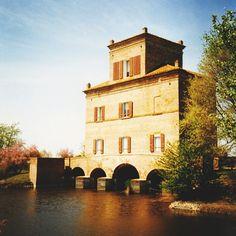 Mesola (Ferrara) - Instagram by culuthilwen