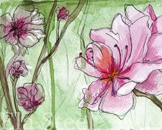 APRICOT BLOSSOMS PRINT of a watercolor painting by Ela Steel archival apricot flower spring pink green gestural paint drips watercolour Drip Painting, Painting & Drawing, Watercolor Flowers, Watercolor Paintings, Apricot Blossom, Beautiful Paintings, Fine Art Paper, Original Artwork, Blossoms