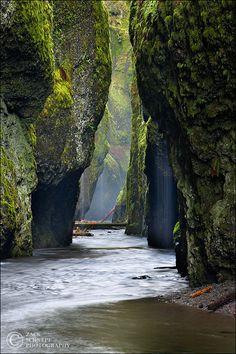 Oneonta Rainstorm Vertical Columbia River Gorge, Oregon