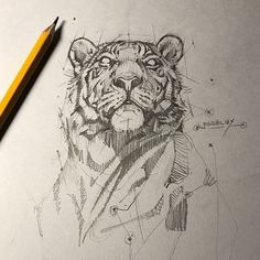 Supreme Portrait Drawing with Charcoal Ideas. Prodigious Portrait Drawing with Charcoal Ideas. Animal Sketches, Animal Drawings, Drawing Sketches, Cool Drawings, Contour Drawings, Drawing Faces, Drawing Tips, Tiger Sketch, Lion Sketch