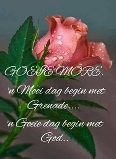 Good Morning Greetings, Good Morning Wishes, Day Wishes, Good Morning Quotes, Lekker Dag, Prayer For Husband, Afrikaanse Quotes, Goeie More, Bible Prayers