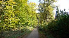Hamburg: Meiendorf (und Volksdorf) aber nicht Rahlstedt