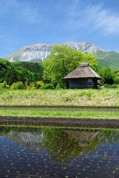 Mt. Daisen, Tottori, Japan 奥大山 御机 茅葺き小屋