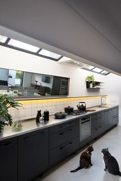 Felix and Mia enjoy spending time in the kitchen almost as much as their owners do. Christo says he and Nico opted for the seamless stainless steel countertop to enhance the industrial look of the house. The kitchen fittings are from Inside Living and the shelf and mirrors were designed by MuseContracts.