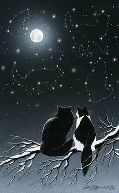 "Feline Fine Art ""Winter Constellations"" by Irina Garmashova-Cawton I Love Cats, Crazy Cats, Cute Cats, Black Cat Art, Black Cats, Black Cat Painting, Cat Cards, Warrior Cats, Moon Art"