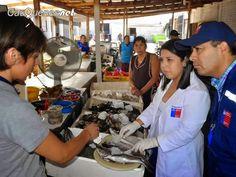 Cauquenesnet / Noticias de Cauquenes: Seremi de Salud fiscalizó venta de pescados y mari...