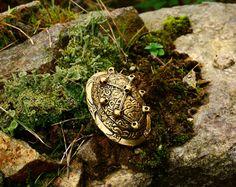 Schildkrötenfibel