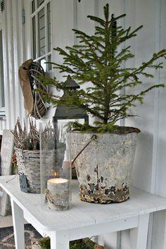 Tre i sinkbøtte Christmas Table Settings, Advent, Christmas Holidays, Planter Pots, Patio, Balcony, Christmas Vacation