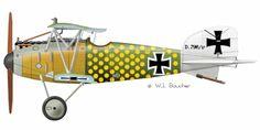 Albatros D.III - 1916