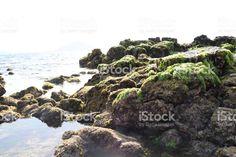 ©ylleeLab #일리 #일리랩 #스톡사진 #아이스톡 #yllee #ylleeLab #StockPhotos #iStock