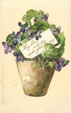"Pot of violets, with card:  ""May love each day, make glad thy way"""