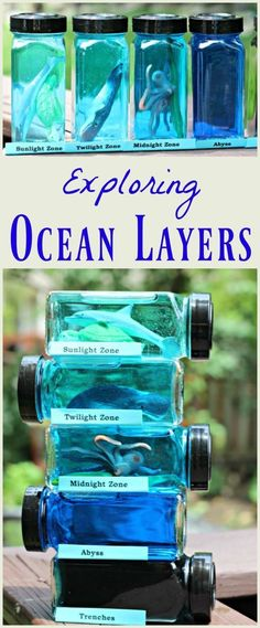 Learn about ocean layers & zones with this creative science activity kids & teens will love! Fun way to discuss marine animals and how light travels thru water -- STEM for kids Ocean science project Ocean Activities, Science Activities For Kids, Preschool Science, Science Lessons, Teaching Science, Experiments Kids, Ecosystem Activities, Water Cycle Activities, Preschool Planner