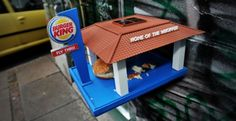 fast food for birds