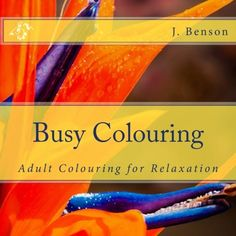 Busy Colouring Adult Colouring for Relaxation (Volume 3)