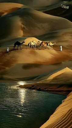 Wonders created by nature and by human hands, are all here. Nature Pictures, Cool Pictures, Cool Photos, Beautiful Pictures, Beautiful World, Beautiful Places, Landscape Photography, Nature Photography, Deserts