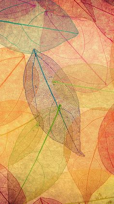 Rainbow Color Leaf Art Fall Nature Pattern iPhone 6 wallpaper