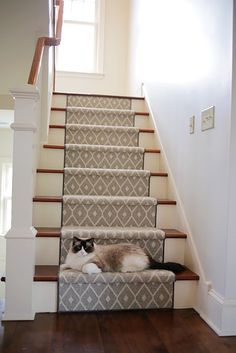 Stylish stair carpet ideas and inspiration. So you can choose the best carpet for stairs.Quality rug for stairs, stairway carpets type, etc. Best Carpet For Stairs, Stairway Carpet, Carpet Stairs, Staircase Runner, Modern Staircase, Staircase Design, Spiral Staircases, Stair Design, Hallway Carpet Runners