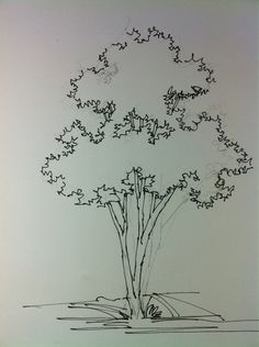 Tree hand rendering. Some times simplicity and what you choose to leave out makes for a better design or a more striking image.