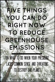 Five things you can do right now to reduce greehouse emissions. #resist