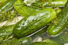 Delicious Half Sour Pickle Recipe