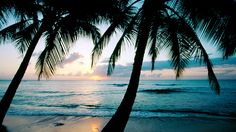 Image for Tropical Beach Paradise Wallpaper Wide