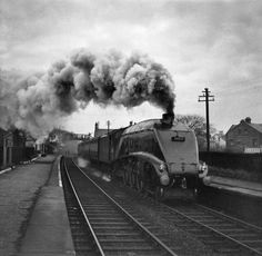 60031 Golden Plover at Forest Hall Station 1957 Steam Trains Uk, Golden Plover, National Rail, Flying Scotsman, Disused Stations, Steam Railway, British Rail, Rare Pictures, Steam Engine