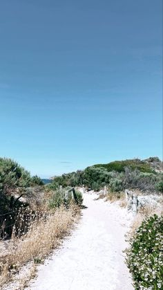 Blue Aesthetic, Country Roads, Beach, Water, Outdoor, Gripe Water, Outdoors, The Beach, Beaches