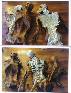 Wrap a full size skeleton in tin foil , paper mache over the tin foil , cut the foil , tape together to make copies .