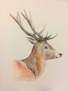 "Red Deer 16"" x 12"" (external mount size) Original watercolour painting by PetPortraitsbySarahB on Etsy"