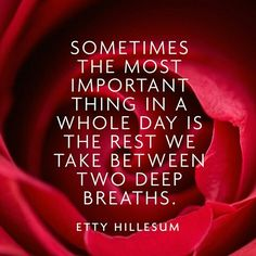 """Sometimes the most important thing in a whole day is the rest we take between two deep breaths."" -Etty Hillesum"
