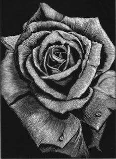Scratchboard Rose
