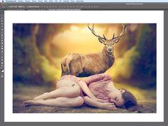 Nastanou občas situace, kdy si umělci, aniž by se předem dohodli, z nějakého důvodu vyberou z fotobanky stejnou, volně šiřitelnou fotku, kterou ke své...