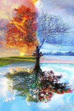 4 seasons, 1 tree Want it done in a Celtic style, or with a tree found in Scotland